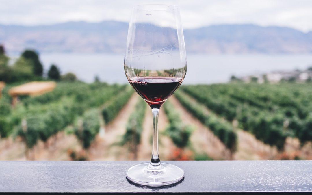 Wines that got us through lockdown
