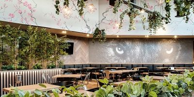 Rockets Menlyn: From Jacarandas to Cherry Blossoms